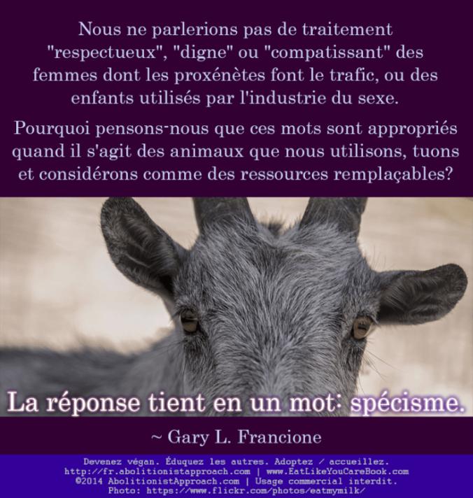20140616-speciesism_goat-FR1