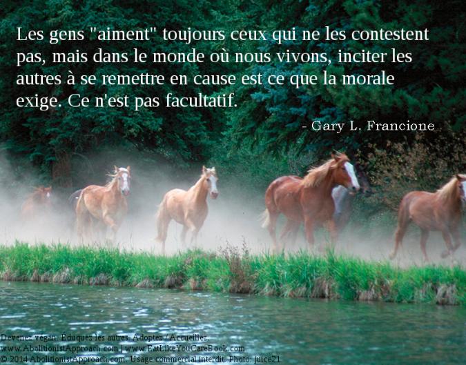 20140507-challenge_horses-FR