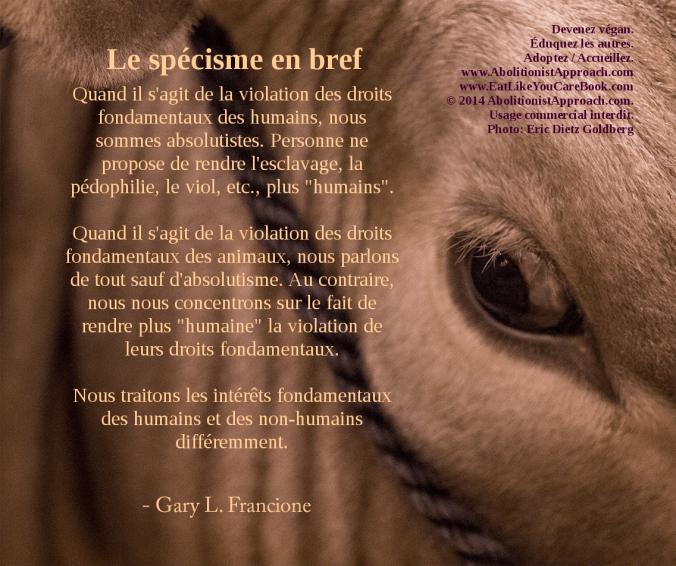 20140502-goldpurple_speciesism-FR